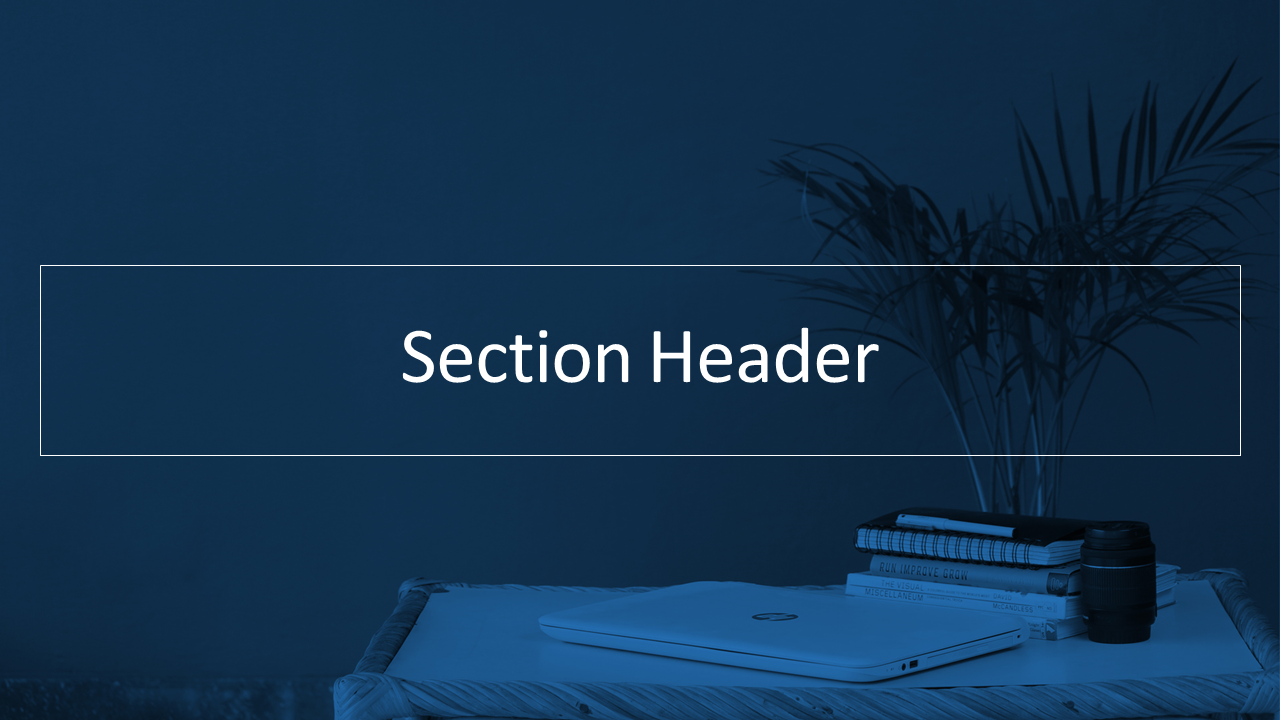 Section Header.png