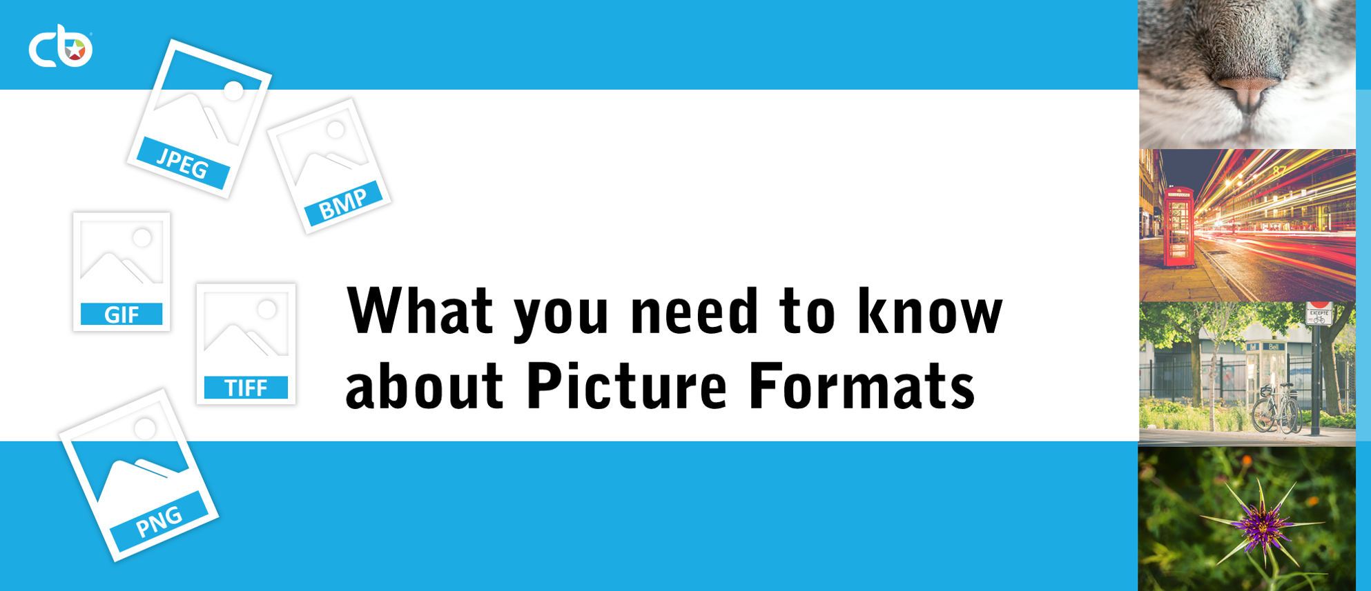 How to Pick the Right Image Format for Your Presentations